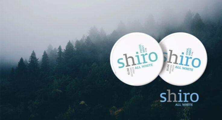 Shiro nikotiinipussi